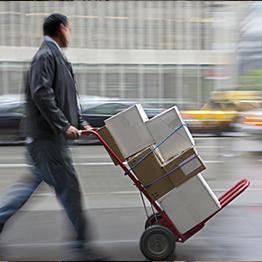 Transporte/Distribución Capilar